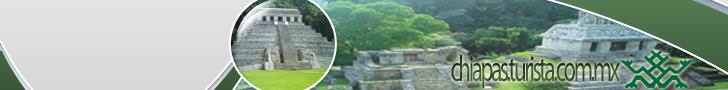 Guide for Hotels in Palenque